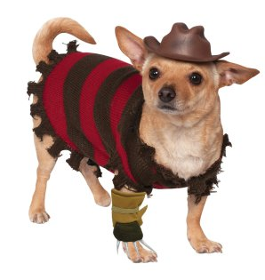 squeeeeeeak https://www.amazon.co.uk/Rubies-Freddy-Krueger-Costume-Small/dp/B00JSMV032/ref=sr_1_1?ie=UTF8&qid=1471114094&sr=8-1&keywords=freddy+krueger+dog+costume
