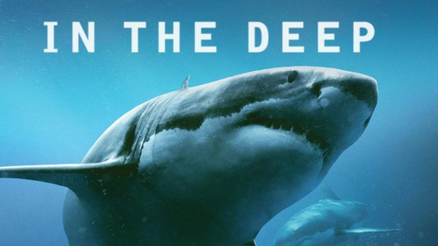 47 Metres Down –Review